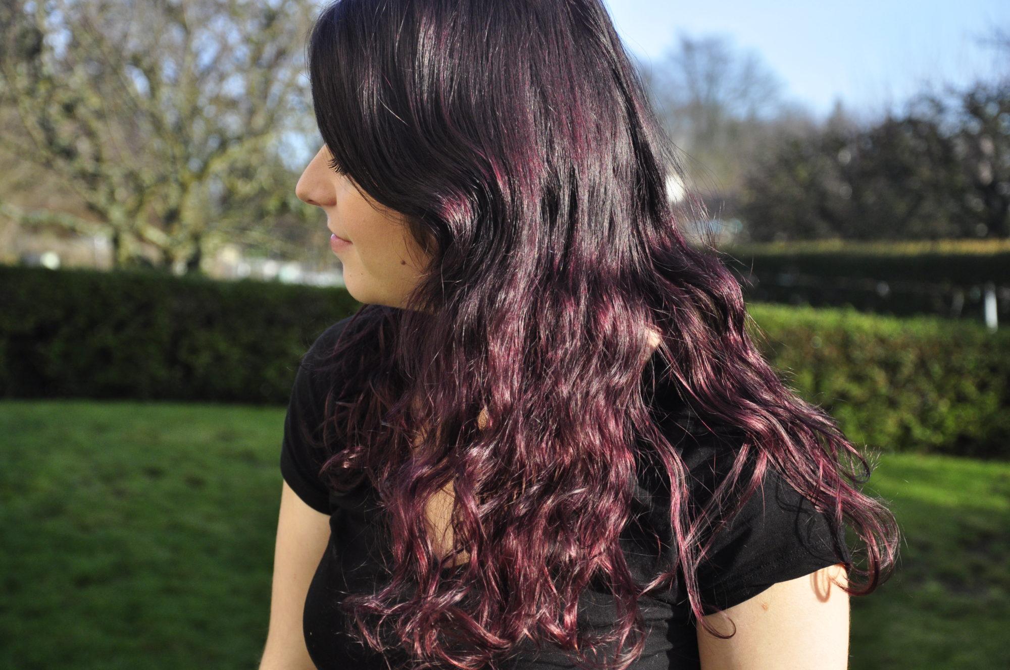 bref jai les cheveux violets prune rglisse myrtilles - Coloration Violine Sur Cheveux Noir
